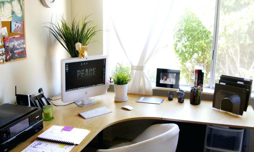 office-with-corner-desk-and-houseplantsgood-cubicle-plants--best