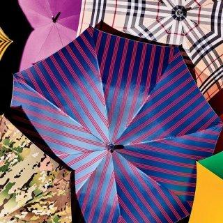 Новая коллекция зонтов